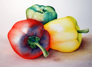 """Peppers in Color"" 16x20 Matted and Framed. $300"