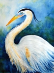 Great Blue Heron, New Orleans, Louisiana