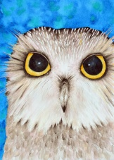 """Northern Saw-whet Owl"" 11x14 matted and framed. NFS - she is resting comfortably at home after a show ;-)"