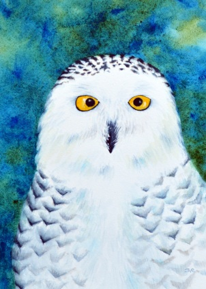 Snowy Owl Watercolor on Arches 140 Cold Press 11x14 matted and framed. For sale at WREN, Bethlehem, NH